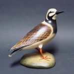 Click to view Frank Finney Carving Ruddy Turnstone photos
